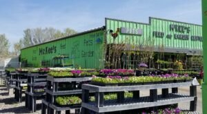 Both A Garden Center And A Petting Zoo, McKee's In Idaho Is An Underrated Day Trip Destination