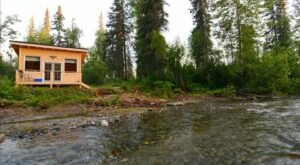 Fall Asleep To The Sounds Of The Creek Outside Your Alaskan Cabin In Talkeenta This Summer