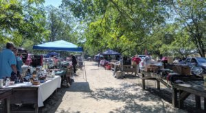 Shop 'Til You Drop At Mt. Croghan Flea Market, One Of The Most Charming Flea Markets In South Carolina