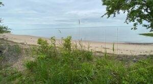 Visit A Woodland Beach In Delaware, A Hidden Gem Beach That Has Its Very Own Hiking Trail