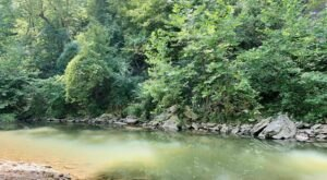This 4.3-Mile Hike In Missouri Leads To The Dreamiest Swimming Hole