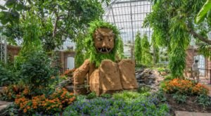 Sneak A Peek At The Hidden Life Of Trolls At Phipps Conservatory In Pittsburgh All Summer Long