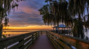 7 Incredible Natural Wonders In Florida That You Can Witness For Free