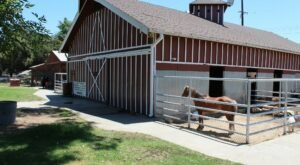 For A Family-Fun Day Trip, You Can Feed Baby Goats And Ride A Pony At Montebello Barnyard Zoo In Southern California