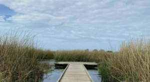 The Sugar Mill Nature Trail Near New Orleans Is A 1.5-Mile Out-And-Back Hike With A Marsh View Finish