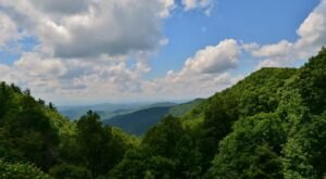 Bluff Mountain Trail Is A Gorgeous Forest Trail In North Carolina That Will Take You To An Overlook