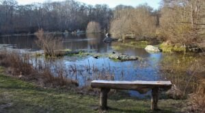 The Unique, Out-Of-The-Way Bird Sanctuary In Rhode Island That's Always Worth A Visit
