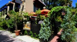 The Goblin Market In Florida Is A Secret Garden Restaurant Surrounded By Natural Beauty