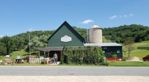 Tucked Away In The Wisconsin Countryside, The Goose Barn Is Hiding Some Legendary Pizza And Ice Cream