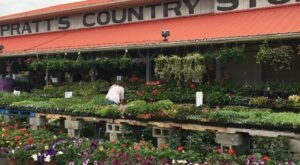 Get Farm Fresh Produce And Homemade Goods At Pratt's Country Store In Tennessee