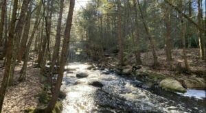 The Gorgeous 1.8-Mile Hike In Massachusetts' Buffam Falls Conservation Area That Will Lead You Past A Waterfall And A River