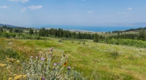 Hop In Your Car And Take The Oregon Trail-Bear Lake Byway For An Incredible 54-Mile Scenic Drive In Idaho
