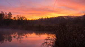 Beaver Marsh Boardwalk In Ohio Leads To One Of The Most Scenic Views In The State