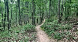 The 7 Most Beautiful Short And Sweet Hikes Near Nashville