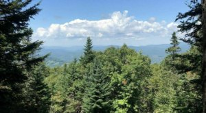 Explore Okemo State Forest In Vermont On This Scenic Wildflower Hike With Surreal Views