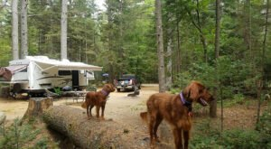 The 7 Highest Rated Campgrounds In New Hampshire Will Remind You Why We Love The Outdoors With Friends