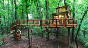 Spend The Night In An Airbnb That's An Actual Tiny Home Treehouse Right Here In Georgia