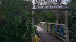 Slip Into The Serenity Of Nature At The Earth Day Nature Trail In Georgia