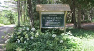 You Can't Find A Nicer Way To Spend The Day Outside In Maine That At The 66-Acre Merryspring Nature Center
