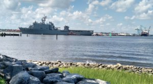 Pack A Picnic And Enjoy Harbor Views From Plum Point Park In Norfolk, Virginia