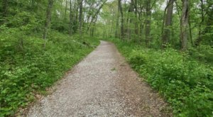 Hiking To Cedar Cliff Falls In Ohio Is The Perfect 3-Mile Summer Adventure