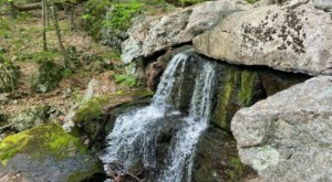 This Pretty Forest Trail In New Jersey Takes You Past A Cave And A Waterfall