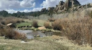 Reynolds Hill Is The Best Trail You've Never Heard Of In Wyoming