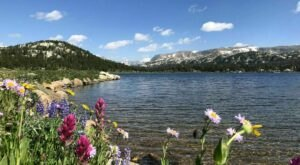 Take An Easy Loop Trail Past Some Of The Prettiest Scenery In Wyoming On The Island And Night Lakes Trail