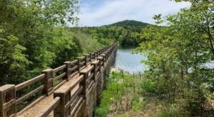 With Waterfalls And Wildflowers, Lake Leatherwood Is A Stunning Arkansas Nature Walk