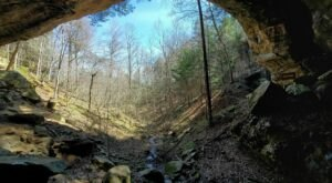 Flowers, Caves, And Creeks Decorate This Beautiful Hiking Trail In Kentucky