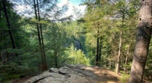 OK Slip Falls Trail Is A Gorgeous Forest Trail In New York That Will Take You To A Hidden Overlook