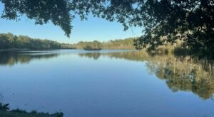 Take An Easy Loop Trail Past Some Of The Prettiest Scenery In South Carolina On Loop Road Trail
