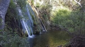 See The Tallest Waterfall In Southern California At Forest Falls