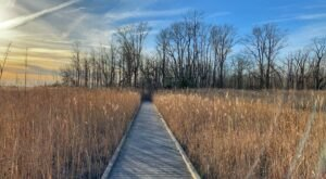 Bombay Hook Boardwalk Trail Is An Easy Hike In Delaware That Takes You To An Unforgettable View