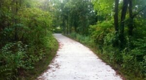 The One-Of-A-Kind Trail In Kansas With A Nature Trail And Historic School House Is Quite The Hike