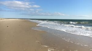 An Unspoiled Beach On The Chesapeake Bay, Grandview Nature Preserve Is Virginia Nature At Its Finest