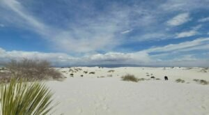 This Is One Of The Most Kid-Friendly Hiking Trails At White Sands National Park In New Mexico
