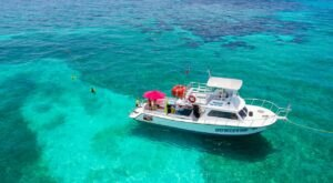 6 Snorkeling Tours In Florida That Will Level Up Your Summer Adventures