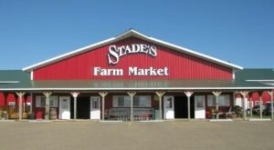 You Can Pick Your Own Produce In Illinois At Stade's Farm And Market