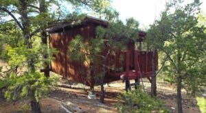 Santa Fe Tree House Camp Is The One-Of-A-Kind Campground In New Mexico That You Must Visit Before Summer Ends