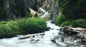 7 Incredible Natural Wonders In Wyoming That You Can Witness For Free