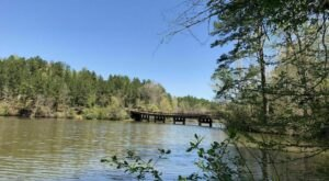 9 River Trails In Alabama To Explore This Summer