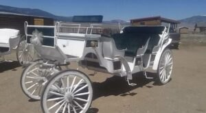 Take A Carriage Ride Through Angel Fire For A Truly Unique New Mexico Experience