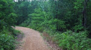 Hop In Your Car And Take Blue Buck Knob Forest Scenic Byway For An Incredible 24-Mile Scenic Drive In Missouri