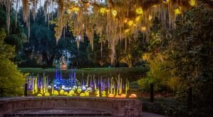 Take A Nighttime Stroll Through Brookgreen Gardens In South Carolina This Summer At The Art By Night Special Event