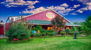 Wine, Dine, And Spend The Night At The Cape Fear Vineyard And Winery In North Carolina