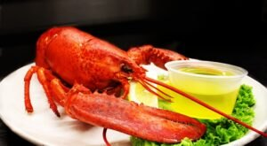 These 7 Vermont Coast Seafood Restaurants Are Worth A Visit From Any Part Of The State