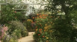 The Largest Butterfly House In Idaho Is A Magical Way To Spend An Afternoon