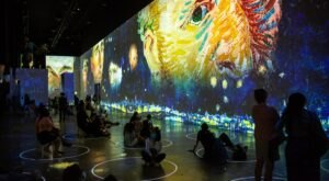 You Will Want To Get Your Tickets Now To Colorado's Highly-Anticipated Immersive Van Gogh Exhibit