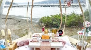 Enjoy A Posh Picnic In Washington This Summer With These Pop-Up Picnic Rentals